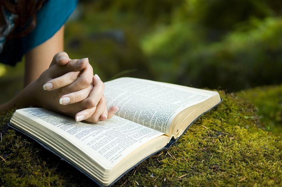 Leitura bíblica diária evangelica