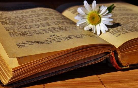 Livros Poéticos da Bíblia