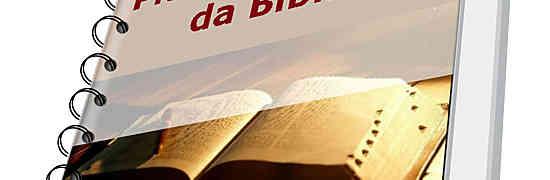 Como ler a Bíblia em um ano?